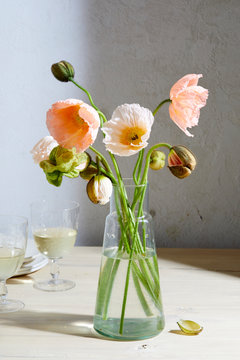Spring Flowers, Pink Poppies in a Vase