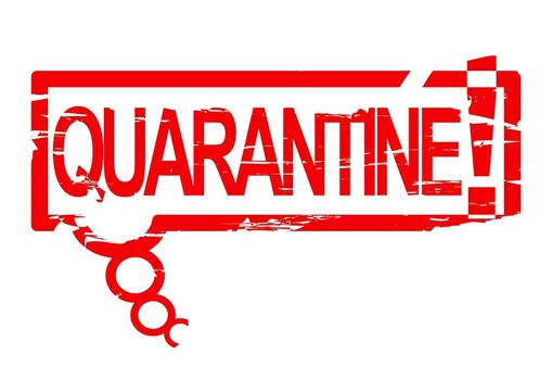 Damaged oval stamp with the words - Quarantine