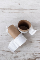 running out of supplies with top view of empty toilet paper rolls
