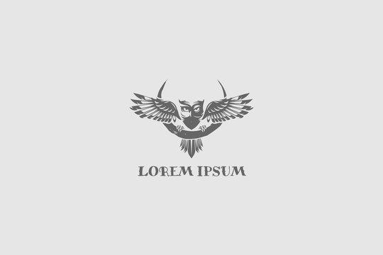 simple and modern owl bird vector logo template
