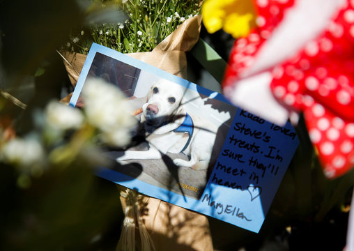 A photo of a neighborhood dog sits at a memorial for Shulman, the owner of Leschi Market, who passed away due to coronavirus on March 18 during the outbreak of coronavirus disease (COVID-19) in Seattle,