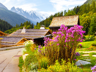 Fototapete - Colorful blossom flowers garden bush, Chamonix, France Alps.