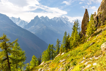 Fototapete - Mont Blanc mountain massif range view Chamonix, France Alps.