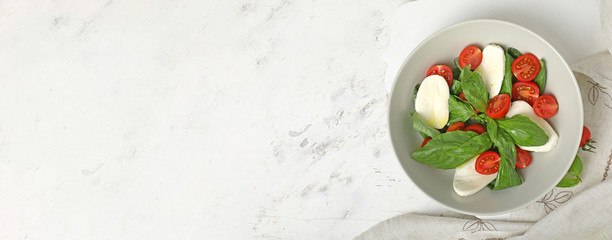 Mozzarella cheese with tomatoes and basil on white background with space for text