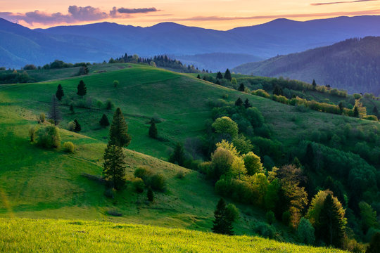 mountainous countryside in springtime at dusk. trees on the rolling hills. ridge in the distance. clouds on the sky. stunning rural landscape of carpathians