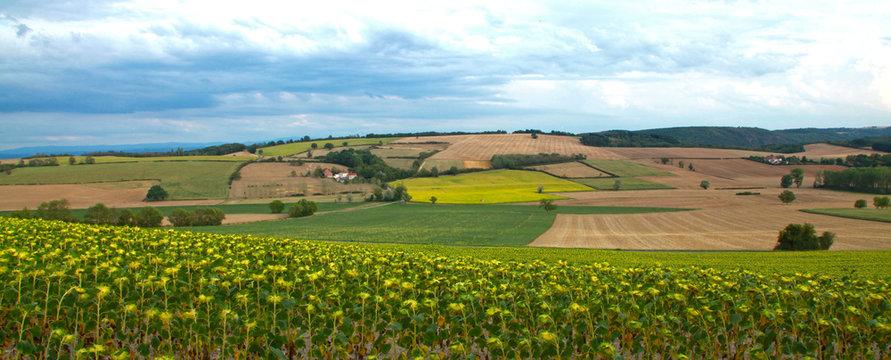 Paysage agricole en auvergne