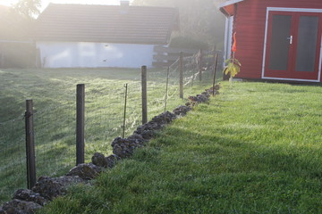Foto op Plexiglas Olijf foggy morning country