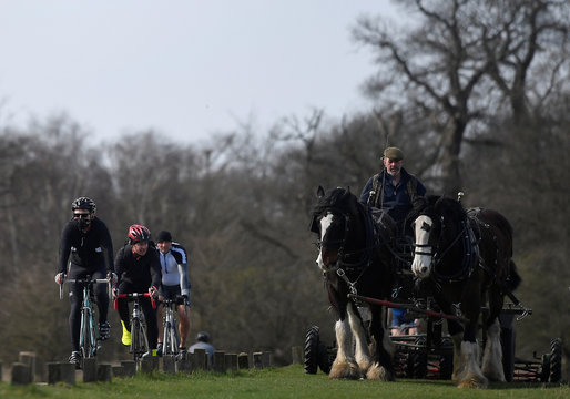 Cyclists, including one with a protective face mask, pass a man cutting grass with shire horses in Richmond Park, as the number of coronavirus disease cases (COVID-19) grow around the world, London, Britain