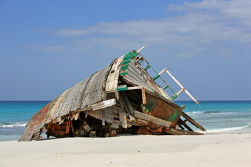 Garden Poster Shipwreck Abandoned ship wreck on the beach of Socotra island