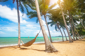 Fototapete - Beautiful tropical beach with coconut palm trees and hammock