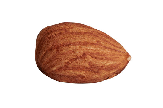 Macro photo of almond on a highlighted background