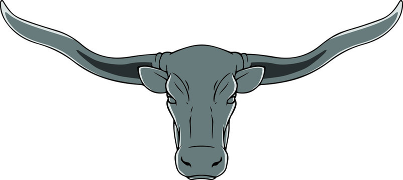 Vector drawing of the head of a Texas longhorn on a white background