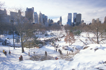 Fototapete - Ice skating Wollman Rink in Central Park, Manhattan, New York City, NY after winter snowstorm
