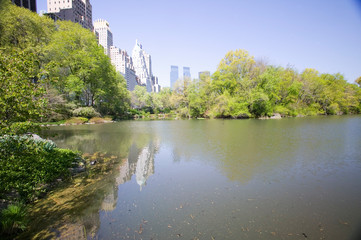 Fototapete - Lake in Central Park in Spring with New York City skyline in background, New York
