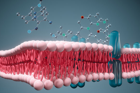 Cell membrane and biology, biological concept, 3d rendering.