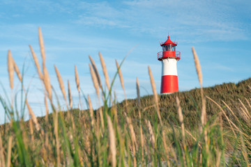 Wall Mural - Red lighthouse on the island of Sylt, Nordfriesland, Germany
