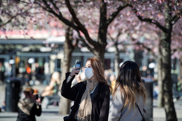 A woman wearing a protective mask takes a selfie among blooming cherry trees in Kungstradgarden park, amidst the coronavirus disease (COVID-19) pandemic in Stockholm
