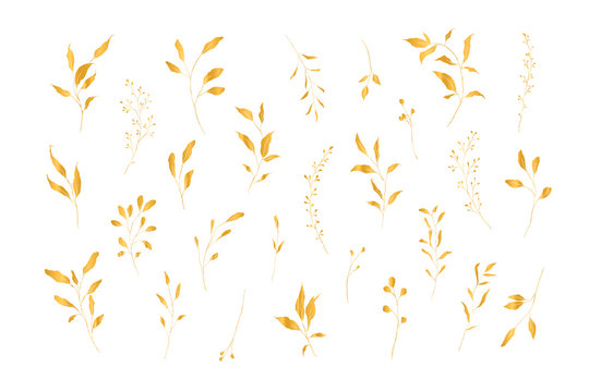 Botanical line art silhouette golden leaves hand drawn pencil sketches isolated on white background. Fine art floral elegant delicate graphic clipart for wedding invitation card. Vector illustration