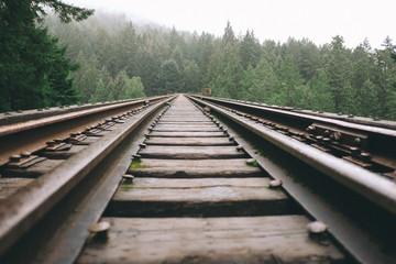 Spoed Fotobehang Spoorlijn railway bridge in the forest