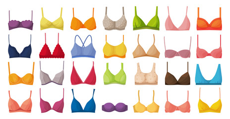 Bra of underwear vector cartoon set icon. Isolated cartoon set icon lingerie. Vector illustration bra of underwear on white background.
