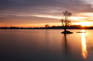 Wall Mural - Lake with alone tree at dramatic sunset