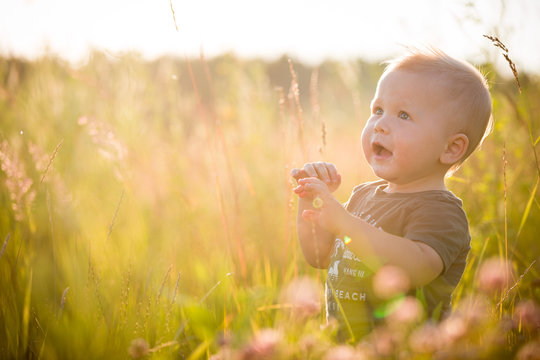 Portrait of a cute toddler boy sitting in a field among the grass at sunset. A child walks in the park. On open air. Happy summer and lifestyle concept. Childhood.