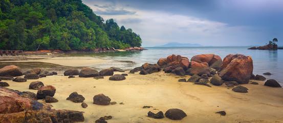 Penang national park, Malaysia. Panorama Fotomurales