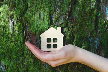 young female hand holding small wooden house against old tree bark, safe, sweet and ecological home...