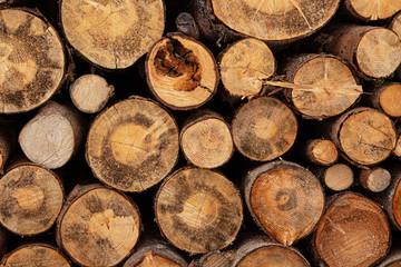 Fotoväggar - Fireplace wood logs texture