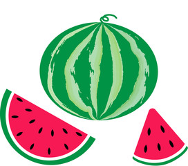 sweet watermelon slices vector image
