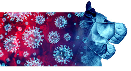 Pets And Disease