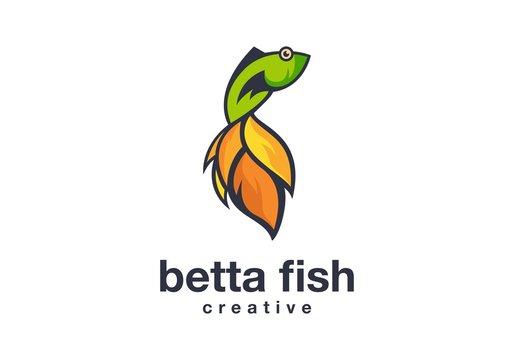 colorful fish logo vector illustration