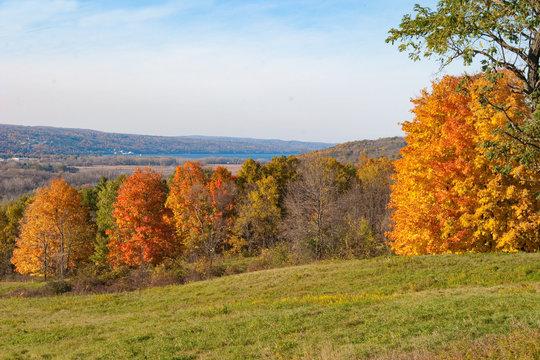 Autumn Pasture over Seneca Lake