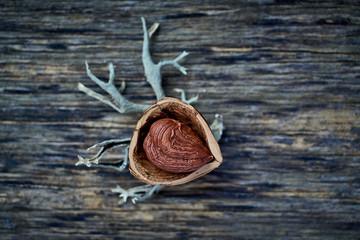 From above appetizing tasty hazelnut in open walnut shell on wooden table