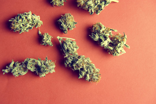 From above pile of medical marijuana buds scattered on red surface background