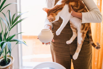 Crop female in casual clothes demonstrating small clay vase to white and brown spotted cat while standing against green houseplant and balcony in light room of modern apartment