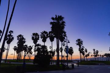 Wall Murals Los Angeles sunset un Venice Beach California