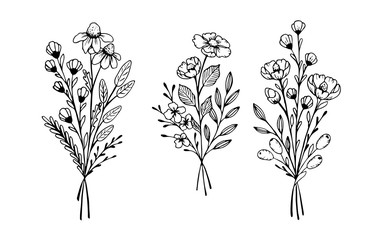 The set of hand drawn vector elements for your design. Leaves, swirls, floral elements. Wall mural