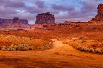 Wall Murals Cuban Red Dirt road in Monument Valley