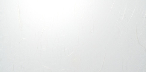 Poster Aigle 和紙の背景素材(基調色はホワイト)雲龍紙