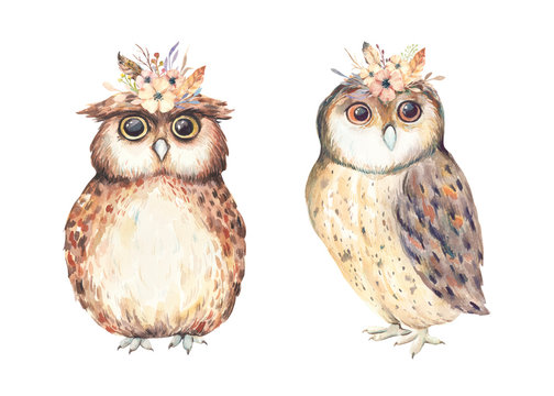 Watercolor cute boho owls. Watercolor owl with flowers on the head.  Watercolor forest baby animal print.