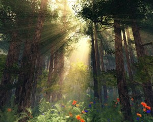 Poster Marron chocolat Rays of the sun through the trees, sunlight in the forest, a fabulous forest in the morning in the fog, 3D rendering