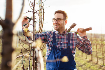 Young farmer pruning fruit tree. Agricultural occupation. Gardening at spring Fotomurales