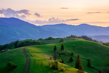mountainous countryside in springtime at dusk. road among the trees on the rolling hills. ridge in the distance. clouds on the sky. beautiful rural landscape of carpathians