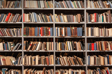 View of shelves with books