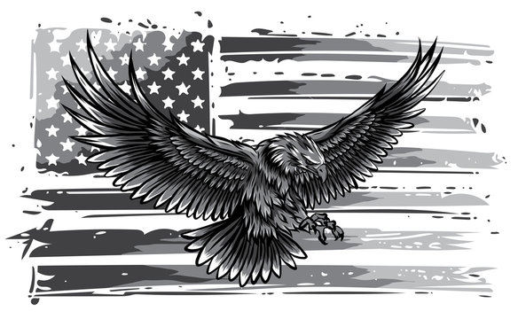 monochromatic vector illustation American eagle against USA flag and white background.