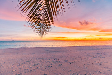 Wall Mural - Landscape of paradise tropical island beach, sunrise shot. Beautiful sunset landscape, vacation beach banner