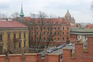 Rua polonesa