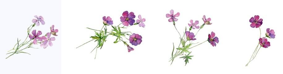 Watercolor bouquets of pink wild flowers Fotobehang