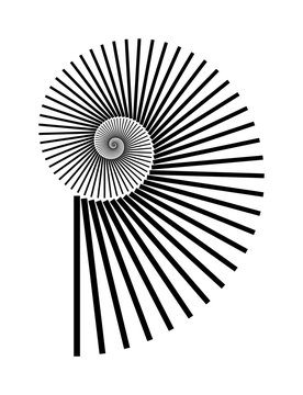 Abstract vector Archimedean spiral, shell symbol shape on a white background. Isolated spiral, template for design, hypnotic effect. Eps 10